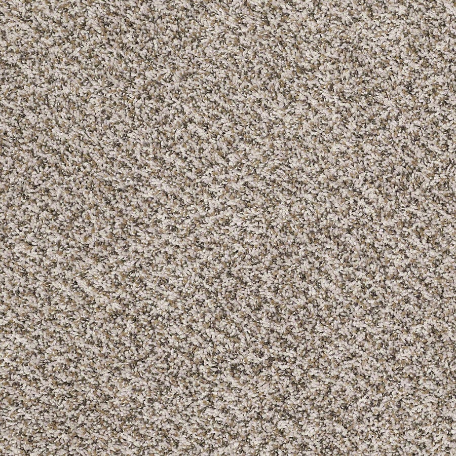 Shaw Stock Impact Textured Indoor Carpet At Lowescom