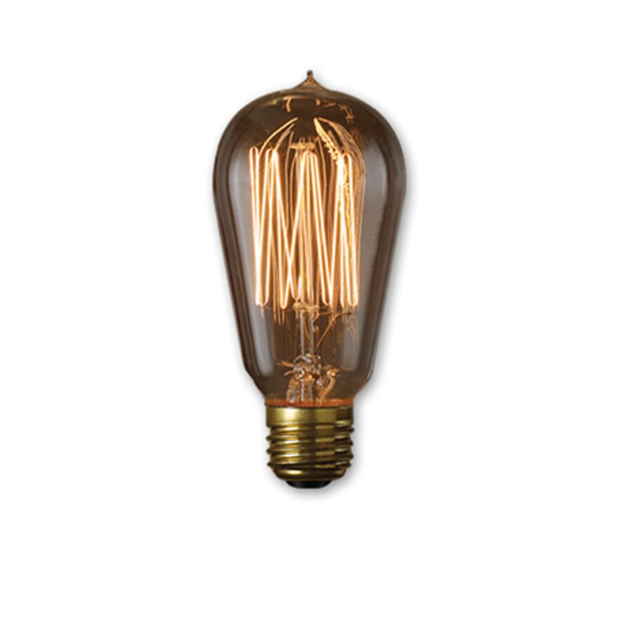 Lightbulb Lights Fashion Lighting Vintage Collection 60 Watt For Indoor Or Enclosed