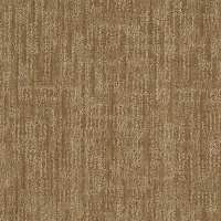 Shop STAINMASTER Active Family Unmistakable Curry Carpet ...