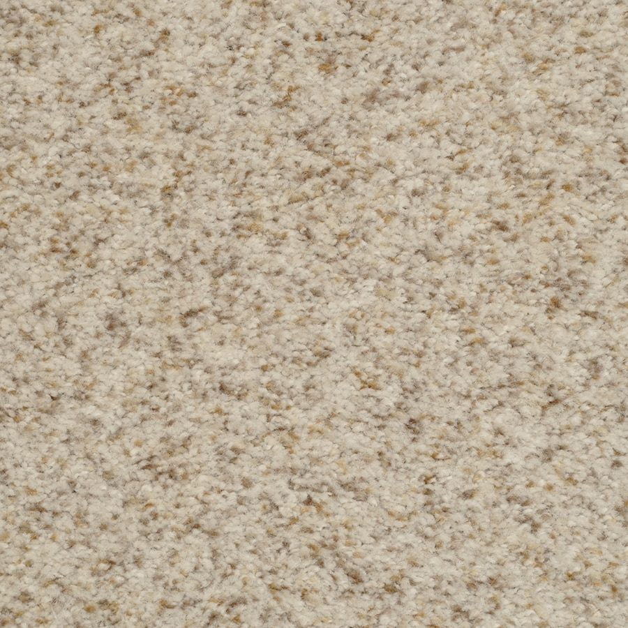 Scenic Stainmaster Active Family Occasion City Lights Carpet Invista Stainmaster Carpet Reviews Wallpapers Design Stainmaster Berber Carpet Reviews Masland Stainmaster Carpet Reviews houzz-02 Stainmaster Carpet Reviews