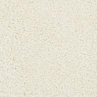 Shop STAINMASTER Active Family Stellar Linen Carpet Sample ...