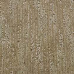 Small Of Stainmaster Carpet Reviews