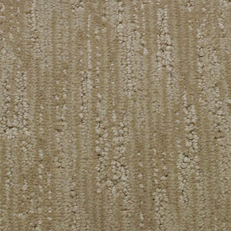 Large Of Stainmaster Carpet Reviews