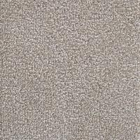 Shop STAINMASTER LiveWell Scenic City Luna Carpet Sample ...