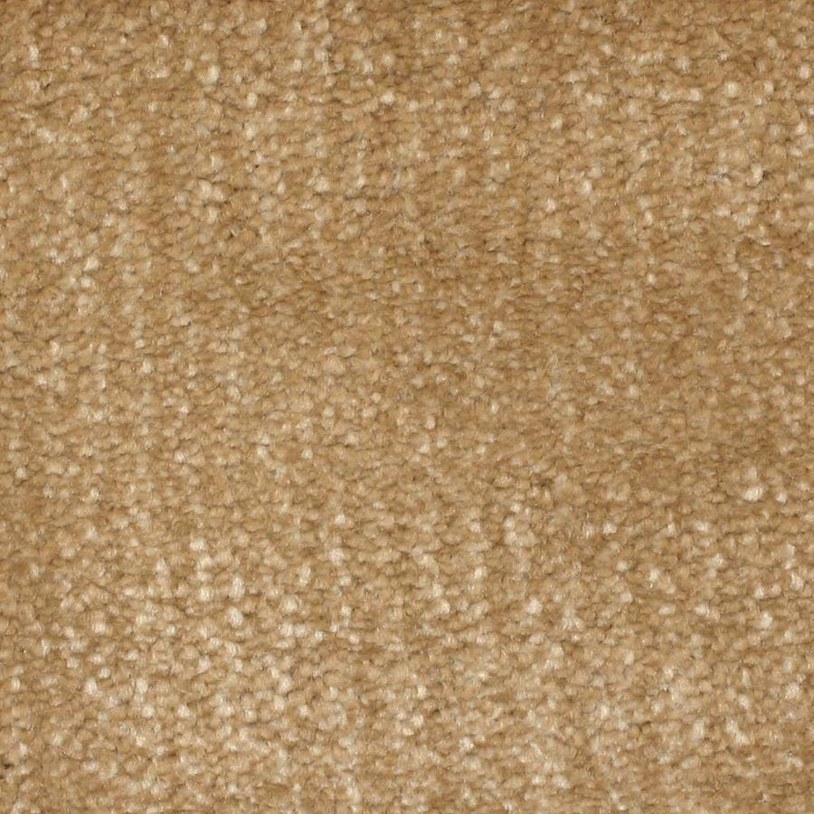 Stainmaster Petprotect Pilot Point Ii Cove Carpet Sample