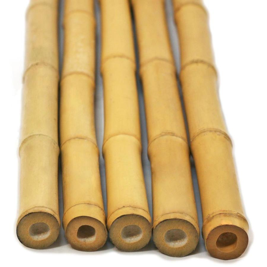 Bamboo Fence Canada Backyard X Scapes Common 6 Ft Actual 6 Ft 25 Pack Natural