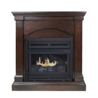Shop Pleasant Hearth 35.75-in Dual-Burner Vent-Free ...