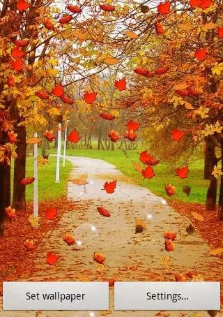 Water Falling Leaves Live Wallpaper Apk Autumn By Submad Group F 252 R Android Kostenlos Herunterladen