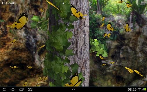 Butterflies 3d Live Wallpaper Apk Butterfly 3d Pour Android 224 T 233 L 233 Charger Gratuitement Fond