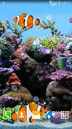 3d Fish Live Wallpaper Apk Coral Fish 3d Pour Android 224 T 233 L 233 Charger Gratuitement