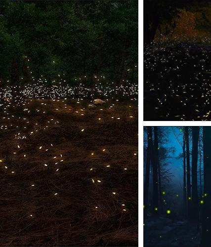 3d Fireflies Live Wallpaper Apk Fonds D 233 Cran Anim 233 3d Pour Android T 233 L 233 Chargez