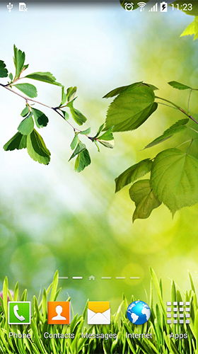 Falling Leaves Live Wallpaper Full Apk Leaves By Blackbird Wallpapers Live Wallpaper For Android