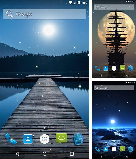 Falling Money Live Wallpaper Apk Fish 3d Pour Android 224 T 233 L 233 Charger Gratuitement Fond D
