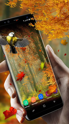 Falling Leaves Live Wallpaper Apk Download Picturesque Nature Live Wallpaper For Android Picturesque