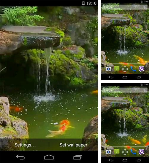 Koi Pond 3d Live Wallpaper Pro Apk Descargar Cupcakes Para Android Gratis El Fondo De