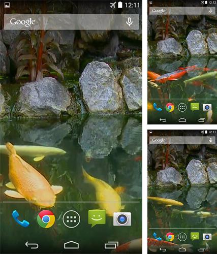 Falling Leaves Hd Live Wallpaper Apk Betta Fish 3d Pour Android 224 T 233 L 233 Charger Gratuitement