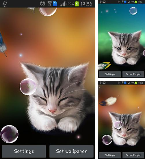 3d Lotus Live Wallpaper Apk Sunset Sunrise 4d F 252 R Android Kostenlos Herunterladen