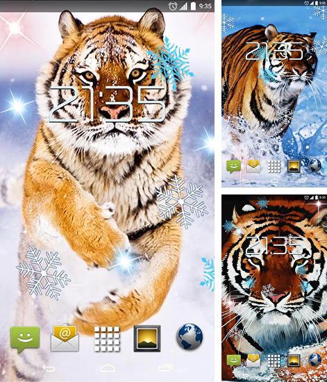 3d My Name Live Wallpaper Apk Download Shiny Butterfly Para Android Baixar Gr 225 Tis O Papel De