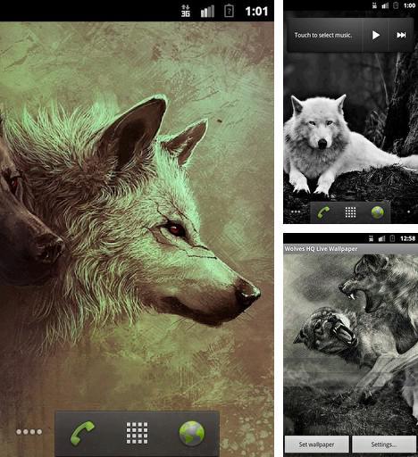Falling Leaves Hd Live Wallpaper Apk Spring Kitten F 252 R Android Kostenlos Herunterladen Live