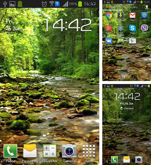 Sakura Falling Live Wallpaper Apk Sakura Para Android Baixar Gr 225 Tis O Papel De Parede