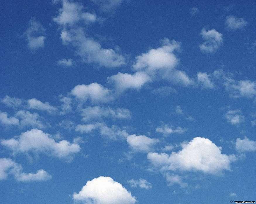 Descargar la imagen en teléfono Fondo, Cielo, Nubes, gratis 10802 - fondo nubes