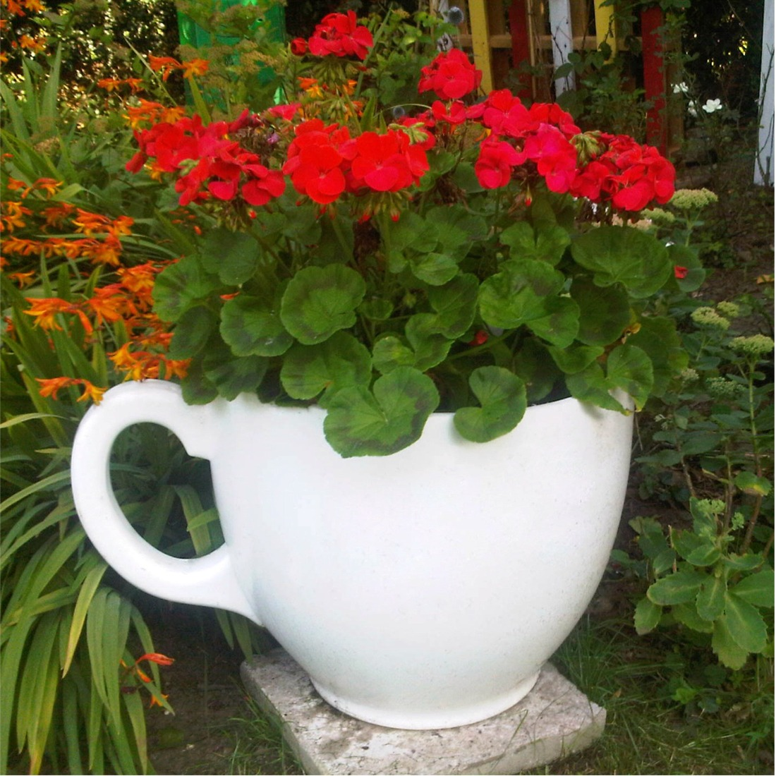 Large Tea Cup Planter Tea Cup Planter