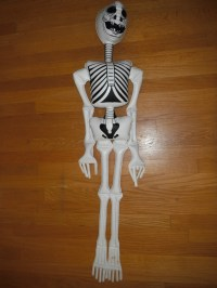 inflatable skeleton | Modern Collecting