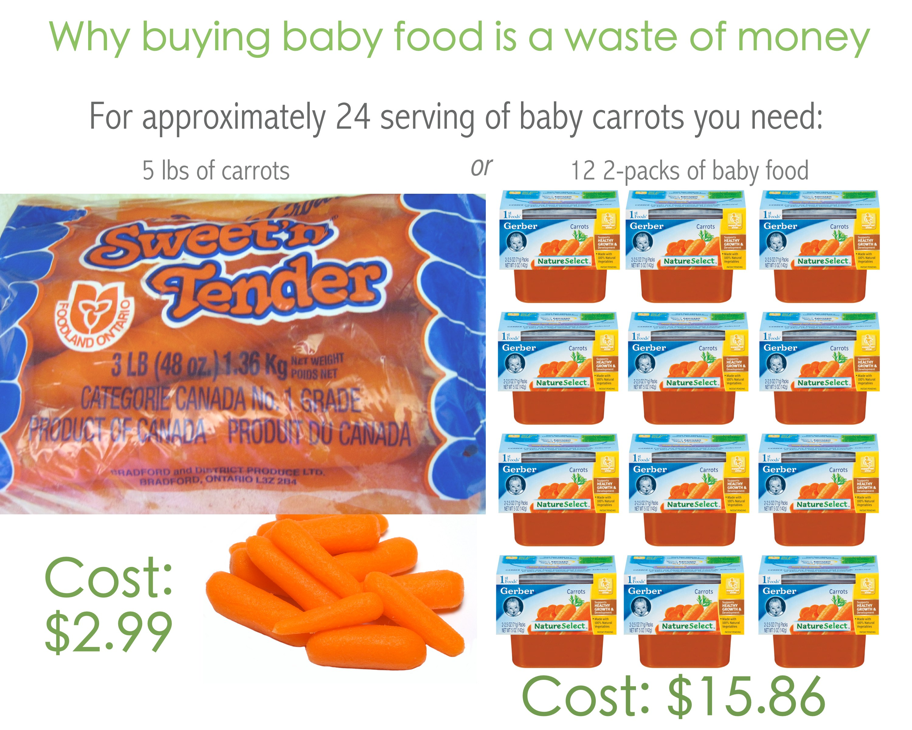 Buy Food Why Buying Baby Food Is A Waste Of Money Modern Mommy 39s