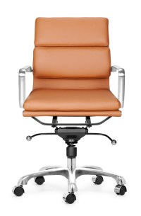 Director office chair low back
