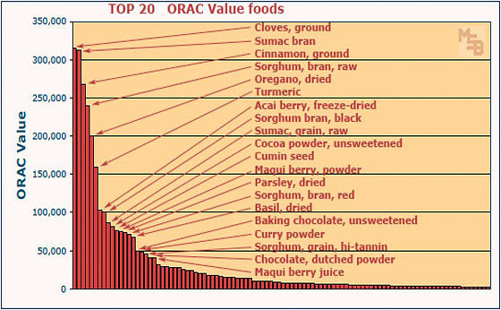 Top 100 High ORAC Value Antioxidant Foods