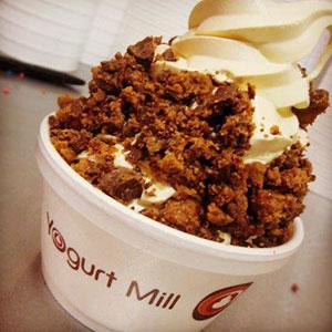 yogurtmill