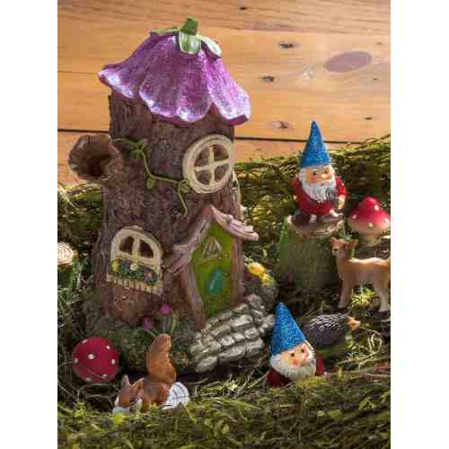 Medium Crop Of Fairy Garden Pictures