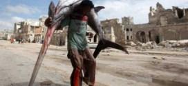 الصومال توقع اتفاقية لصيد الأسماك مع تركيا