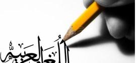 أوضاع اللغة العربية في الصومالقراءة تاريخية لعوامل الازدهار والانحسار(5)
