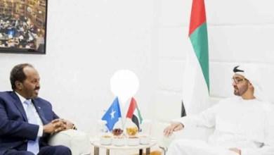 الرئيس ومحمد بن زاي