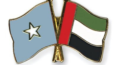Flag-Pins-Somalia-United-Arab-Emirates