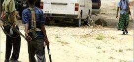 مقتل واختطاف مدنيين في إقليم شبيلي السفلى