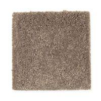 Mohawk Plush Carpet | Carpet Review