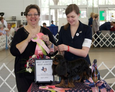 Winning Black & Tan Cavalier King Charles Spaniel with Junior Handler