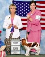 Valentine takes Reserve Winners under judge Jackie Stacy.