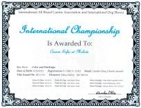 Sofia INT Champion Certificate