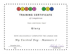 Glory Training Certificate