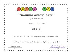 Glory Training Certificate_2