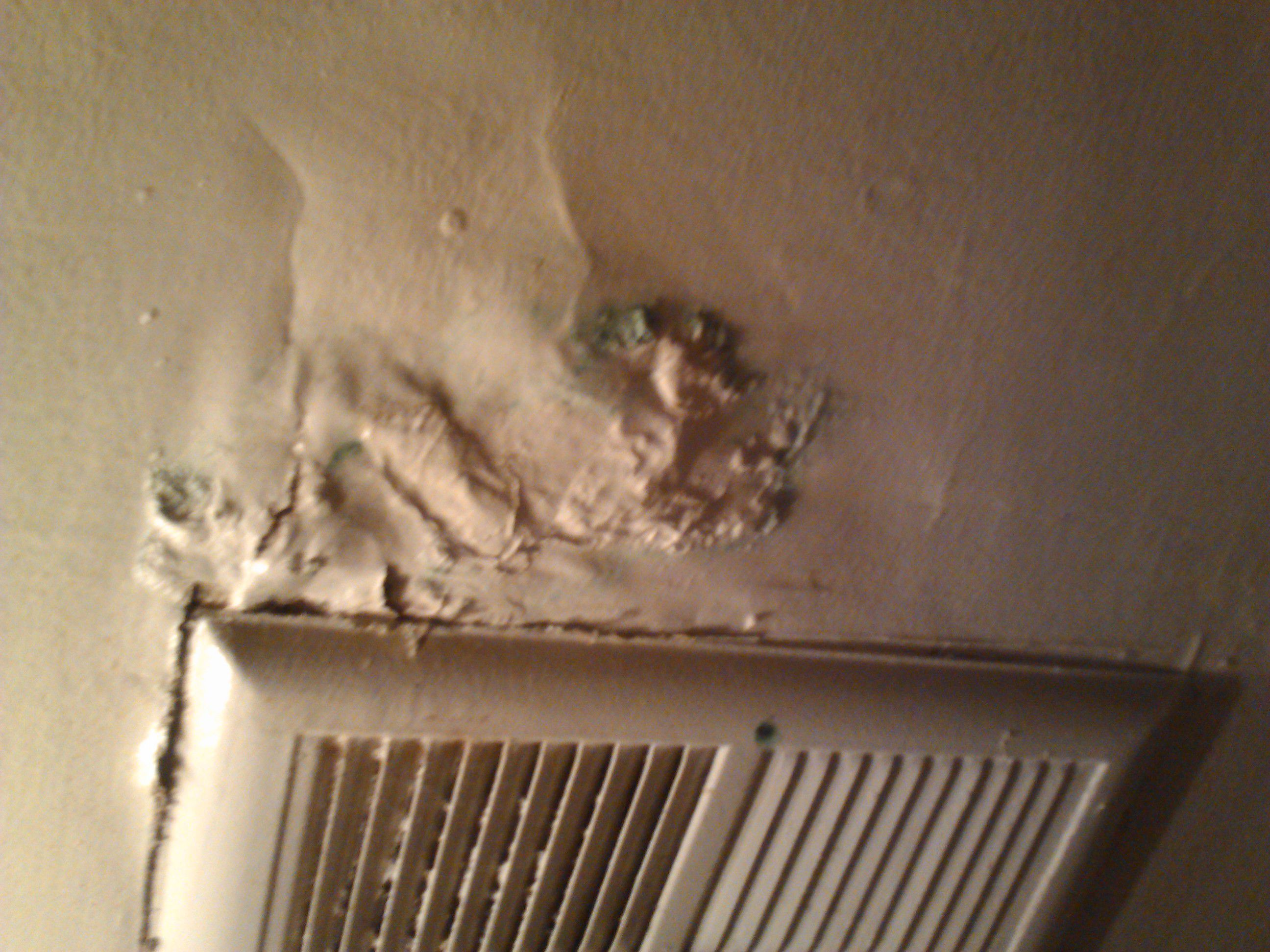 How do you remove mold from bathroom walls -  Removing Mold From Bathroom Walls And Ceiling Tomthetrader Download