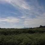 Land&Sky(Kollsland, facing east)