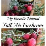 Fall Air freshener