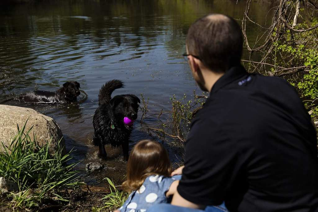 dad and daughter playing with dog during family portrait session
