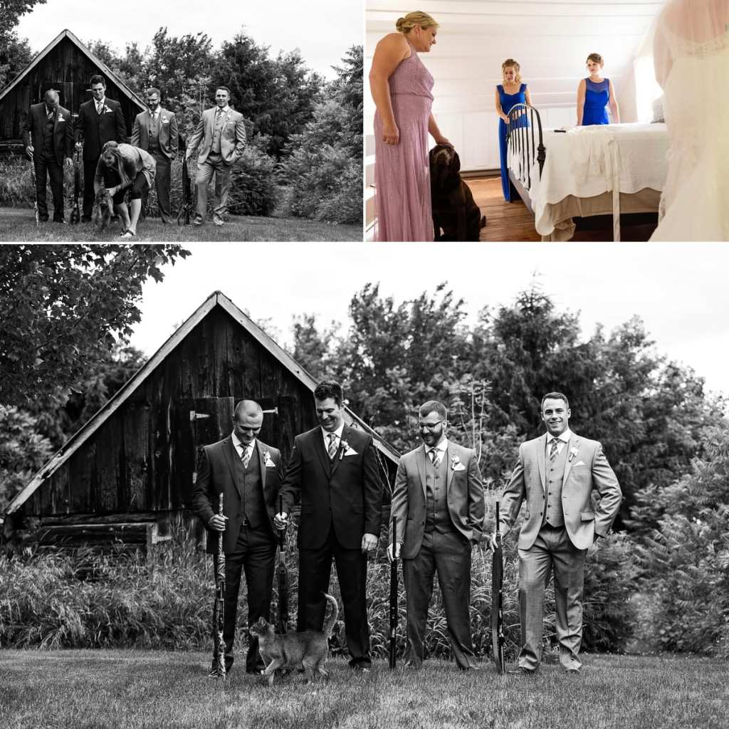 cat and dog get in Williamstown wedding photos