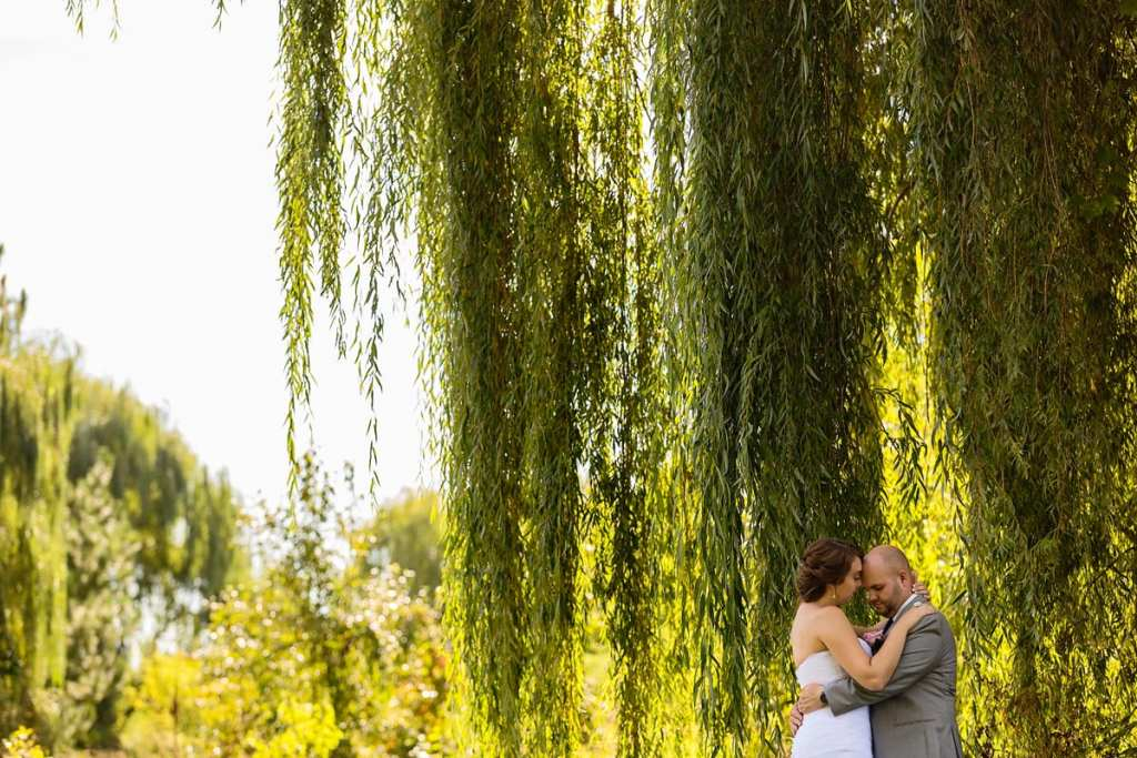 bride looks at groom while he holds her under a willow tree