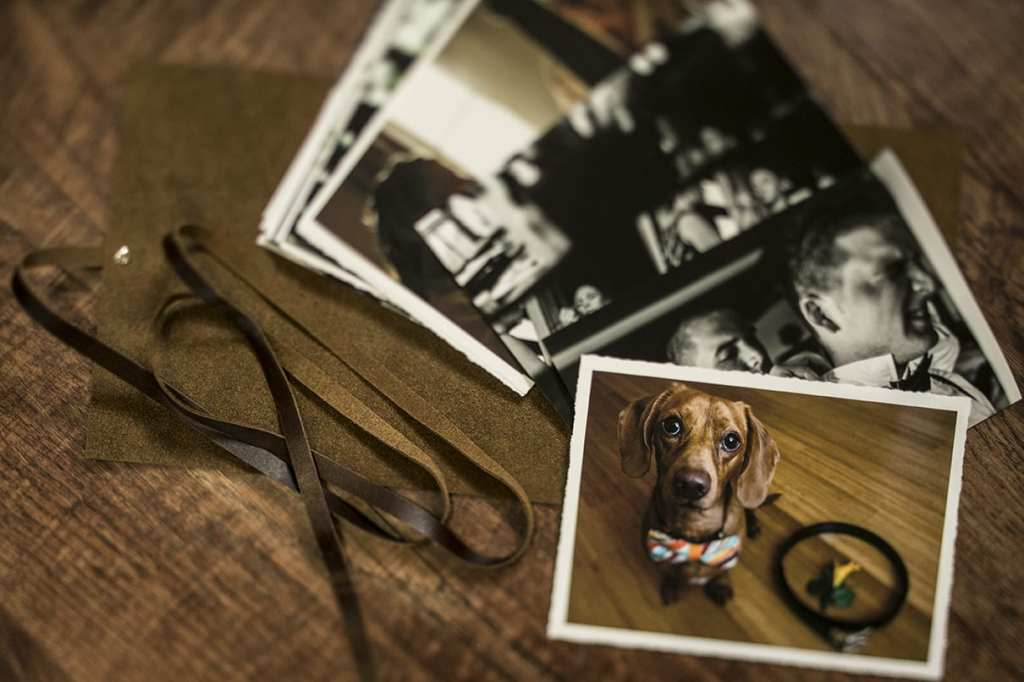 modern Ontario wedding photos featuring weiner dog in bow tie printed on hand-torn matte paper
